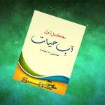 Aab e Hayat Novel By Umera Ahmed -Read free Novels Online
