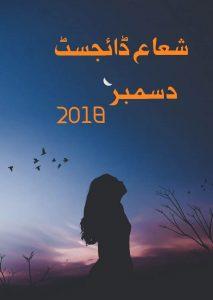 Shuaa Digest December 2018 - shaheenebooks.com-