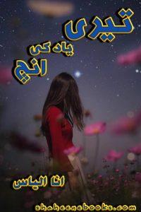 teri-yad-ki-aanch-by-ana-ilyas