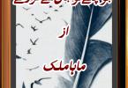 Jo Chaly to Jaan sy gaey