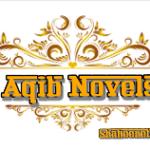 Riaz Aqib Kohler Novels List