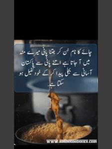 Chaey Poetry