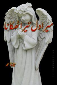 Mera Dil tera Thikana Novel