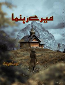 Mery Rehnuma Novel