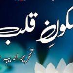 Sakoon E Qalb By Areeba Shahid