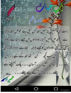 Aab e Hayat Novel | Novel Lines in Urdu