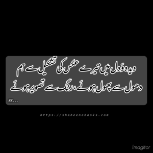 Poetry | Urdu Poetry | Best Urdu Poetry