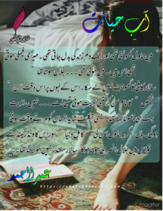 Ab e Hayat Novel