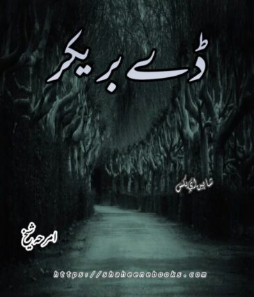 Day Breaker Novel by Amraha Sheikh
