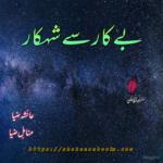 Bekar Sy Shehkar Novel by Ayesha Ziya and Minahil Ziya |  Best Urdu Novel