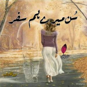 Sun Mere Humsafar Novel by Zoha Asif