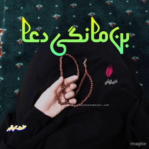Bin Mangi Dua Novel by Effit Seher Tahir Pdf Free Download