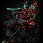 Kala Gulab Novel by Aseaa Malik Complete PDF | Best Urdu Novels