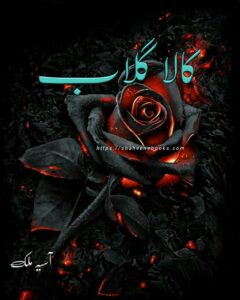 Kala Gulab Novel by Aseaa Malik Complete PDF