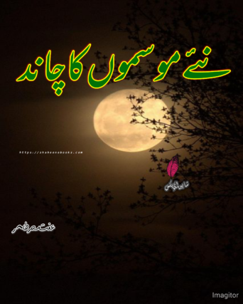 Naye Mausam Ka Chand Novel