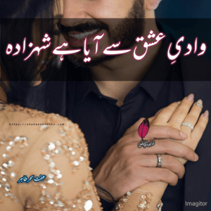 Wadiye Ishq Se Aaya Hai Shahzada Novel | Best Urdu Novels