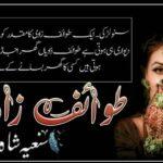 Tawaif Zadi Novel by Saniya Shah | Romantic & Best Urdu Novels