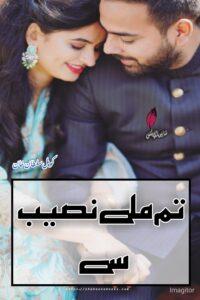 Tum Mile Naseeb Se Novel