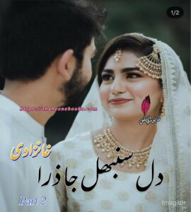 Dil Sambhal Ja Zara Novel Part 2