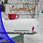 Khawab Jo Adhoora Reh Gea by Komal Sultan Khan | Best and Romantic Urdu Novels