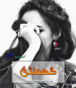 Ghamandi Novel