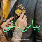 Piya Man Baghi Novel by Aiman Nouman | Free Urdu Novels